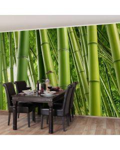 F-1147 Bamboo Trees