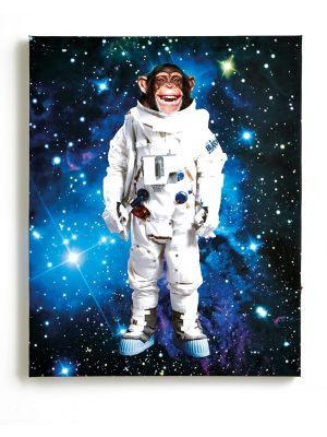 004159 Space Monkey platnena slika Tapetedekor
