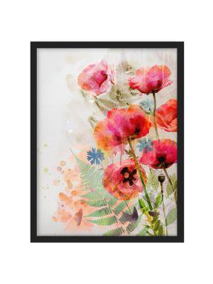 1002 Watercolor Poppy Flowers - okvirjena slika