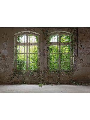 19-DD118794 Old Window Fototapeta flis 350×255 cm
