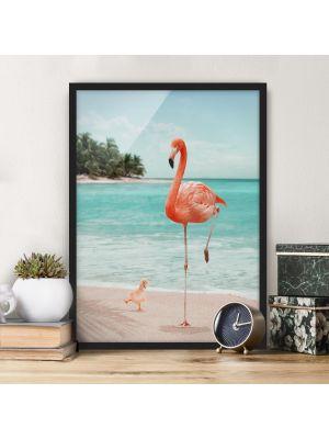 1008 Flamingo at the Beach - okvirjena slika