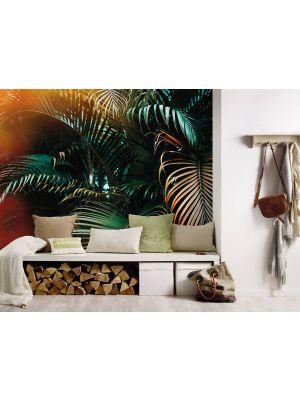 2-DD118795 Jungle Colour Fototapeta flis 350×255 cm