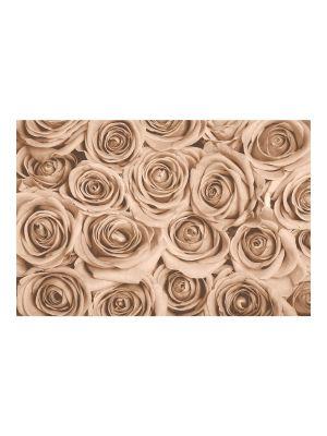F-1073 Brown Roses